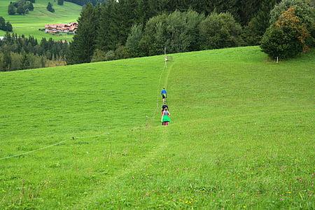 Vándor, kirándulás, számolt be, zöld, szaftos, elérési út, séta