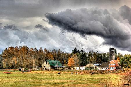 grozeče, Kmetija, nebo, oblaki, na prostem, scensko, mirno