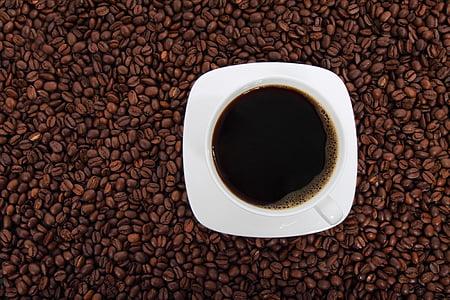 fesols, begudes, cafè negre, cafeïna, cafè, grans de cafè, Copa de cafè