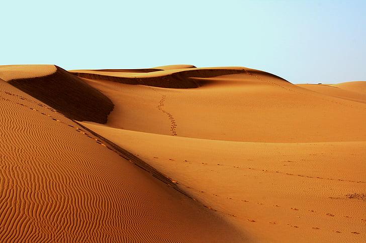 desert de, petjades, calenta, sorra, dunes de sorra