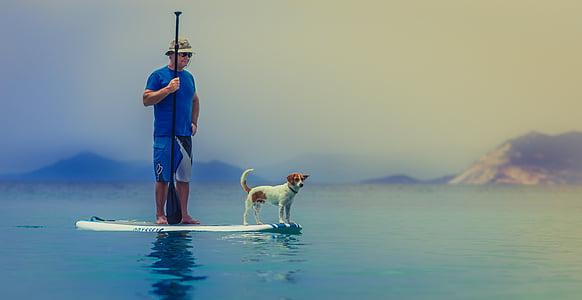 home, gos, pàdel, Junta, Mar, oceà, l'aigua