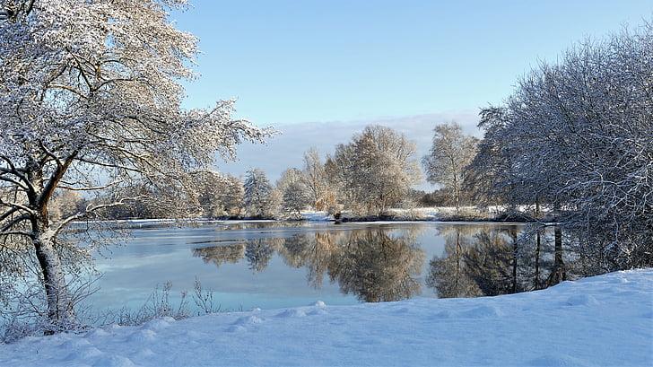 Talvinen, järvi talvella, jäädytetty, talvi, peilaus, kylmä, aika vuodesta
