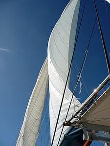 segel, Sky, segelbåt, mast, segelfartyg, vattensporter, blå