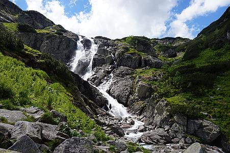 Munţii, cascadă, verde, peisaj, natura, apa, roci