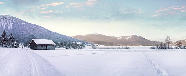 wintry, cross country skiing, snow, sport, winter, landscape, snowy