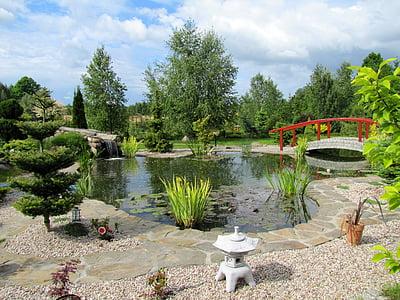 jardin, Japonais, jardin japonais, nature, vert, Japon, arbres