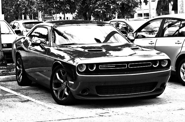 HDR, preto e branco, carro do músculo