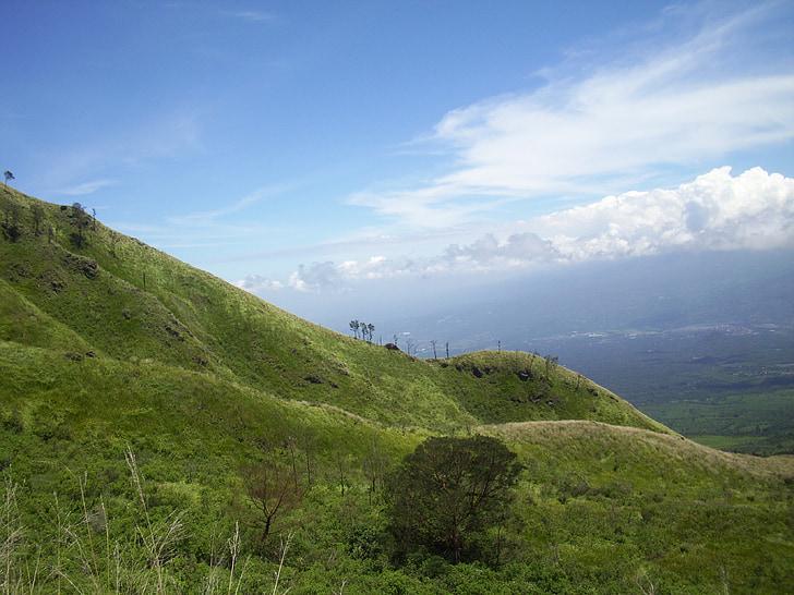 łąka, Sawanna, Java, Wschód, zamontować, Indonezyjski