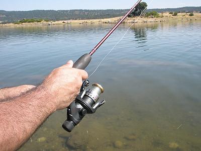 cane, of, fishing, reel, water, hobbies, freshwater Fishing