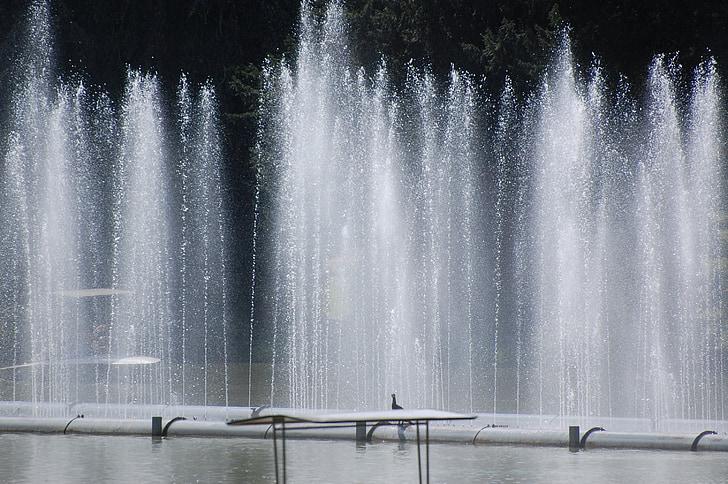 fontän, vatten-funktionen, fontän, vatten, bubbla, vattenmassan, naturen