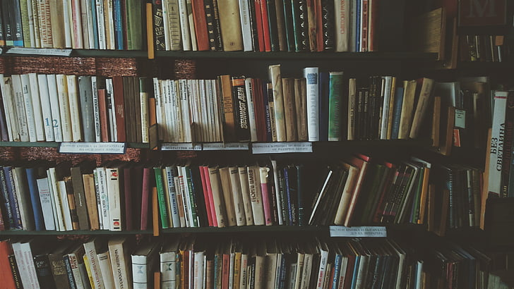 bookcase, books, bookshelves, knowledge, library, literature, novel