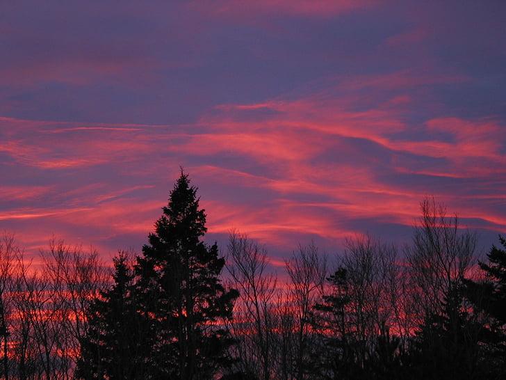 Acadia nationalpark, Maine, solnedgång, Sky, moln, färgglada, Vacker