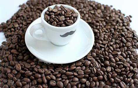 káva, t, kávové zrná, šálka kávy, aróma, kaviareň, fazuľa
