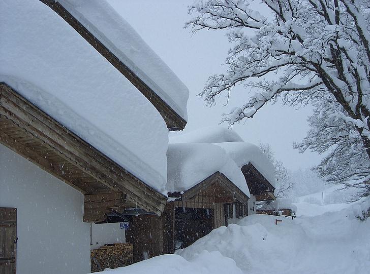 tuyết, mùa đông, wintry, lạnh