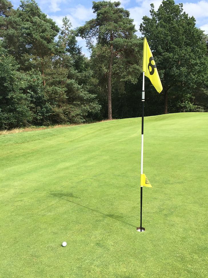 Golf, Golfové ihrisko, športové, rukavice, Zelená