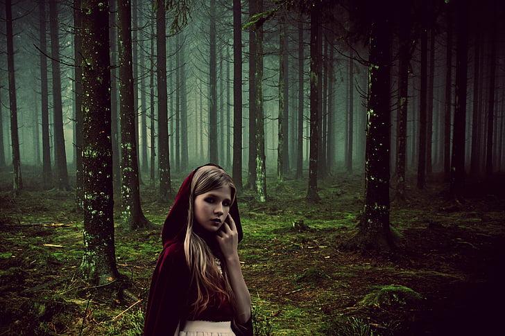 jente, eventyr, rotkäppchen, skog, eventyr, tåke, dystre