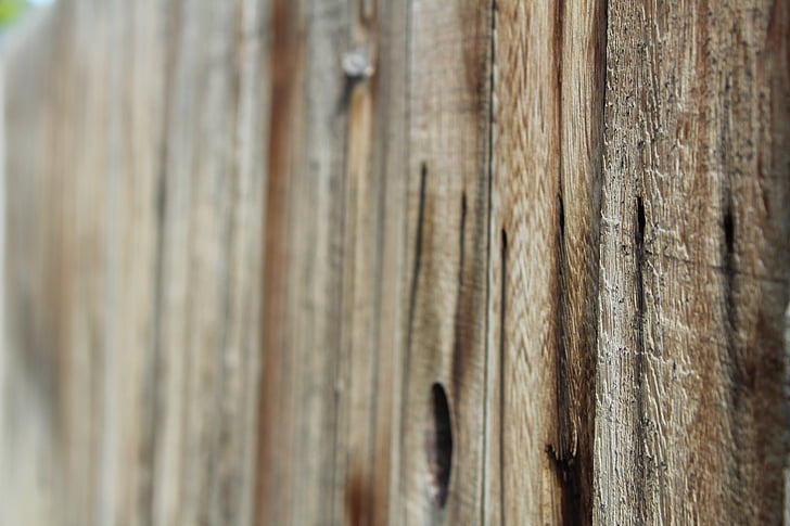træ, hegnet, baggrund, tekstur, træ baggrund, grungy, ru