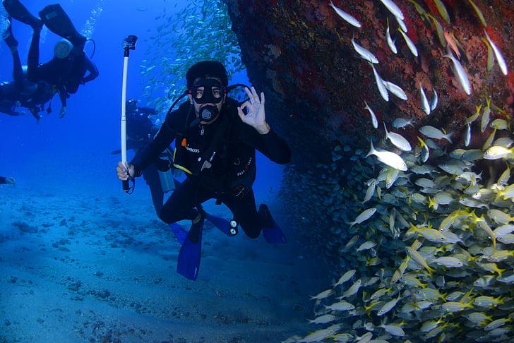 погружение, Голубой, глубоких погружений, в нижней части океана, страсть, дайвер, Дайвинг