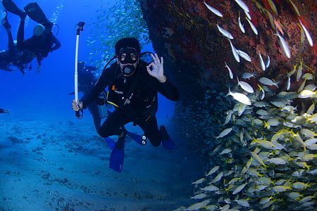 Immersió, blau, busseig profund, a la part inferior de l'oceà, passió, bussejador, Submarinisme