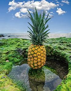 pineapple, fruit, food, healthy, fresh fruit, sweet, fresh
