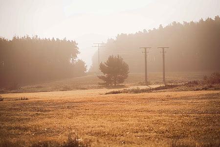 sunrise, sun, atmosphere sunrise sunrise, orange, germany, mood, autumn