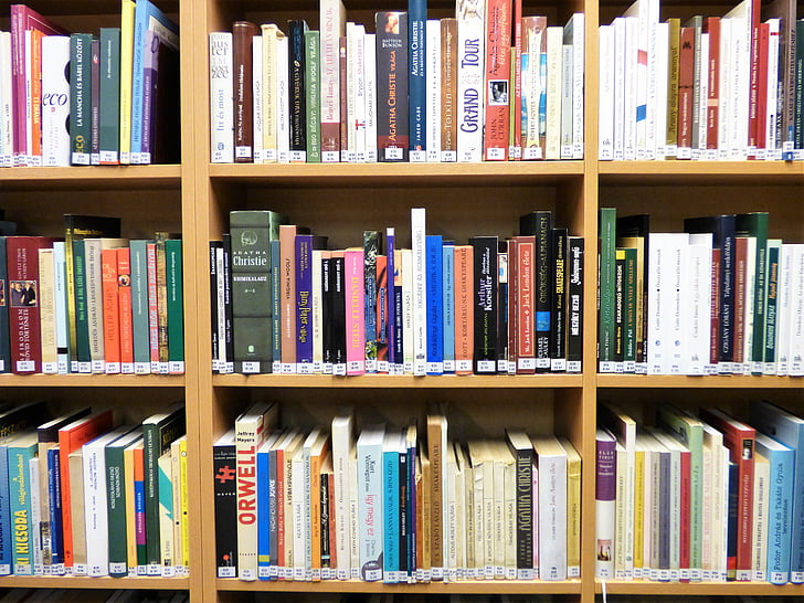 bookshelf, library, books, catalog, color, culture