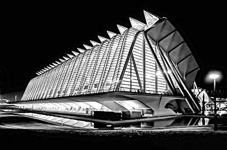 Město umění a věd, Valencia, Španělsko, Santiago calatrava, Architektura, moderní, Muzeum