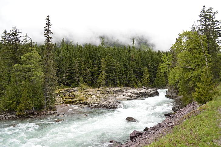 glacera, Nacional, Parc, Montana, Parc Nacional, riu, muntanyes