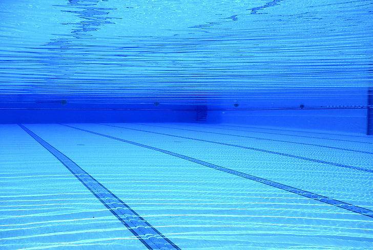 l'aigua, blau, piscina, piscina exterior, sota l'aigua, piscina