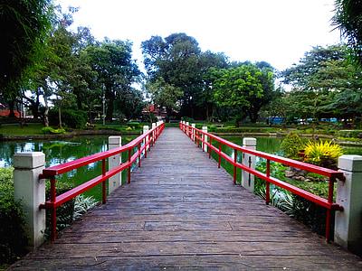 jardin japonais, Parc, paysage, Japonais, jardin, nature, asiatique