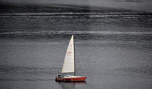 sail, sailing boat, sail boat, boat, sailing, nautical, transportation