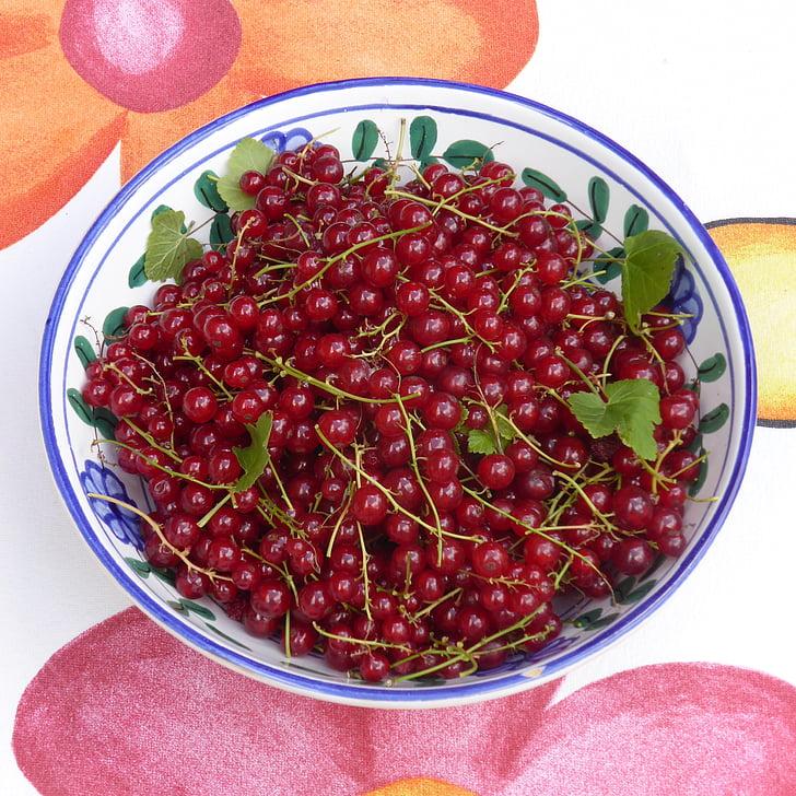 serbentai, vaisių, raudona, vaisiai, minkštas vaisius, rūgštus, mielas