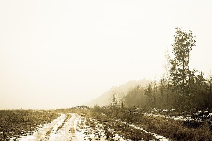 con đường bụi đất, nông thôn, Quốc gia side, Quốc gia, Thiên nhiên, đường dẫn