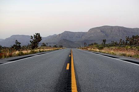 asfalt, carretera, a través de, muntanya, diürna, arbre, l'autopista