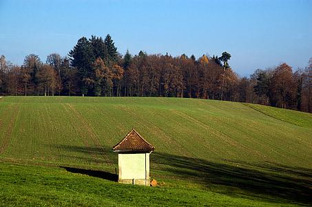 tuds, camp, l'agricultura, paisatge