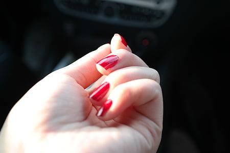 esmalt d'ungles, vernís d'ungles, ungles, mà, vermell, moda, dona