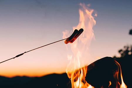 bakgrundsbelyst, Bonfire, Dawn, skymning, eld, Flame, värme