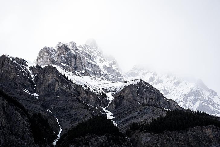 montanha, neve, Cordilheira, Cimeira, altura, conquistar, montanha de neve