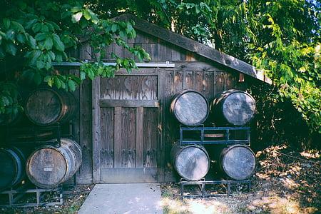 Hut, hangar, maison, en bois, planches, conseils d'administration, barriques