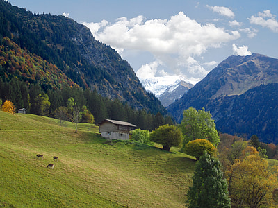 alpské, hory, chýše, Oberstdorf, Horská krajina, krajina, zelená