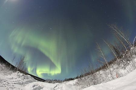 Aurora, Borealis, luces del norte, noche, cielo, paisaje, Norte