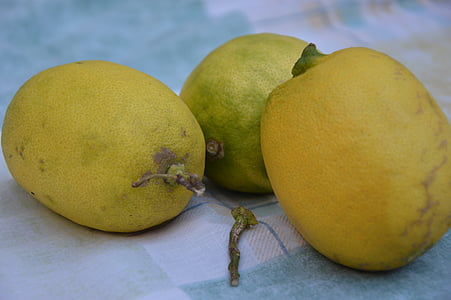 lemons, fruits, citrus fruits, yellow, fruit