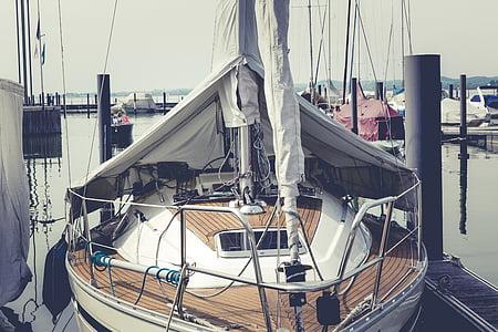 segel, segelbåt, vatten, havet, Bodensjön, Boot, fartyg