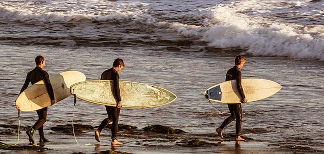 surfistas, surf, prancha de surf, surf, mar, água, oceano