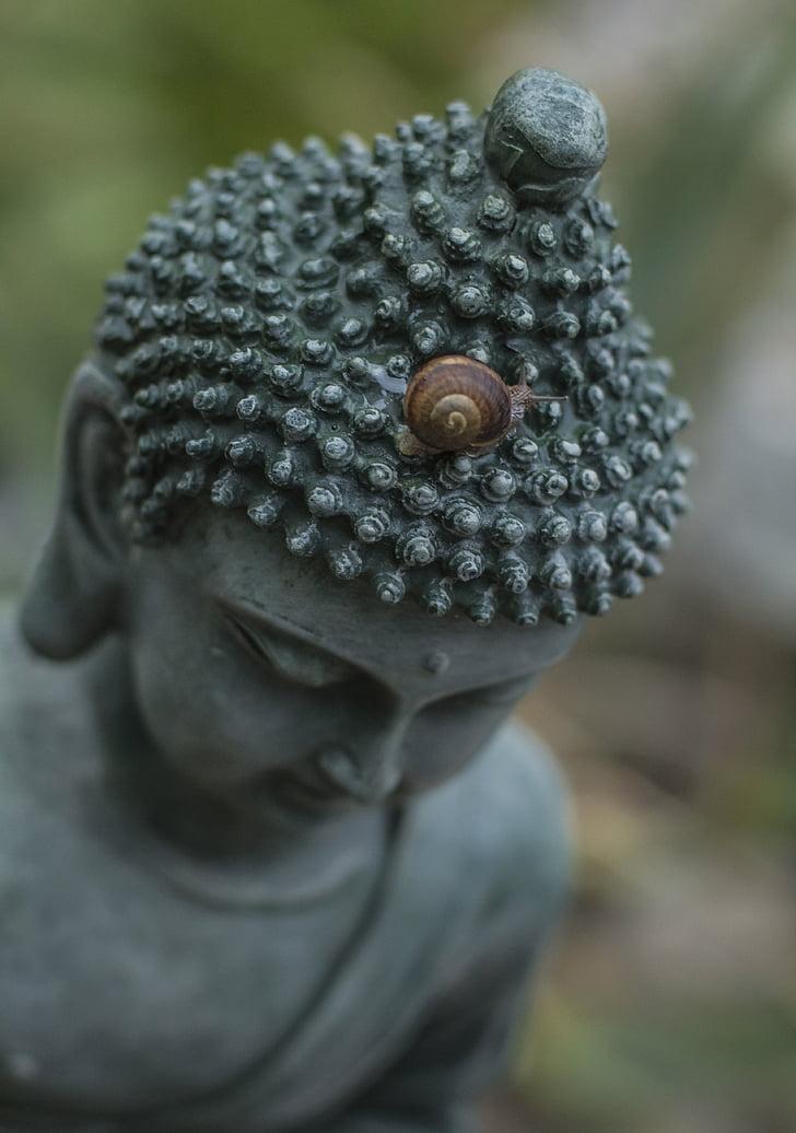 Bouddha, escargot, bouddhiste, religion, pure, calme, méditation