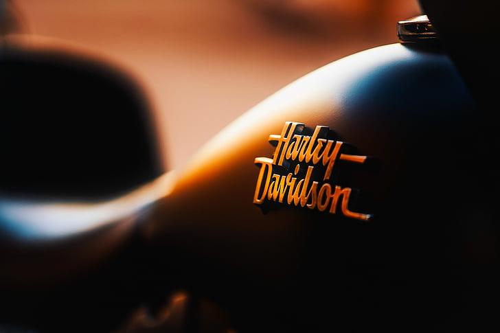 Harley-davidson, moto, viatges, transport, emblema, insígnia, logotip