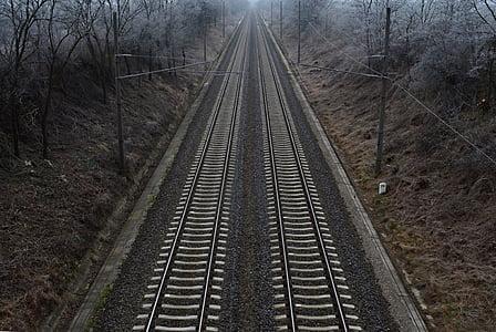 ferroviari, l'hivern, natura, fred, elecció