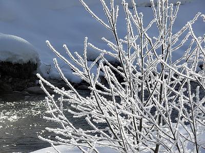 ice, eiskristalle, winter, frozen, crystals, snow, cold
