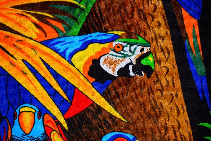 papagáj, törülköző, fürdőlepedő, színes, szín, pad törölköző, Terry