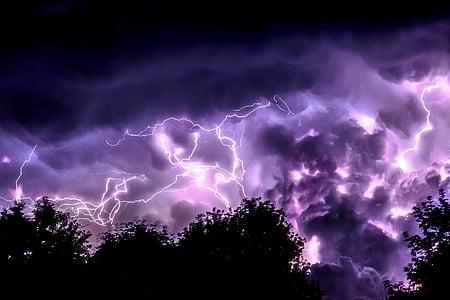 siluetas, nuotrauka, medžiai, apšvietimas, Audra, Žaibas, tamsus